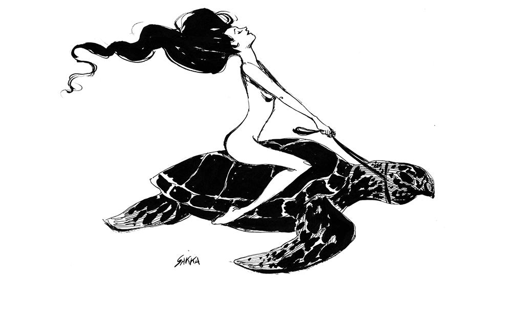 disegno donna tartaruga sakka