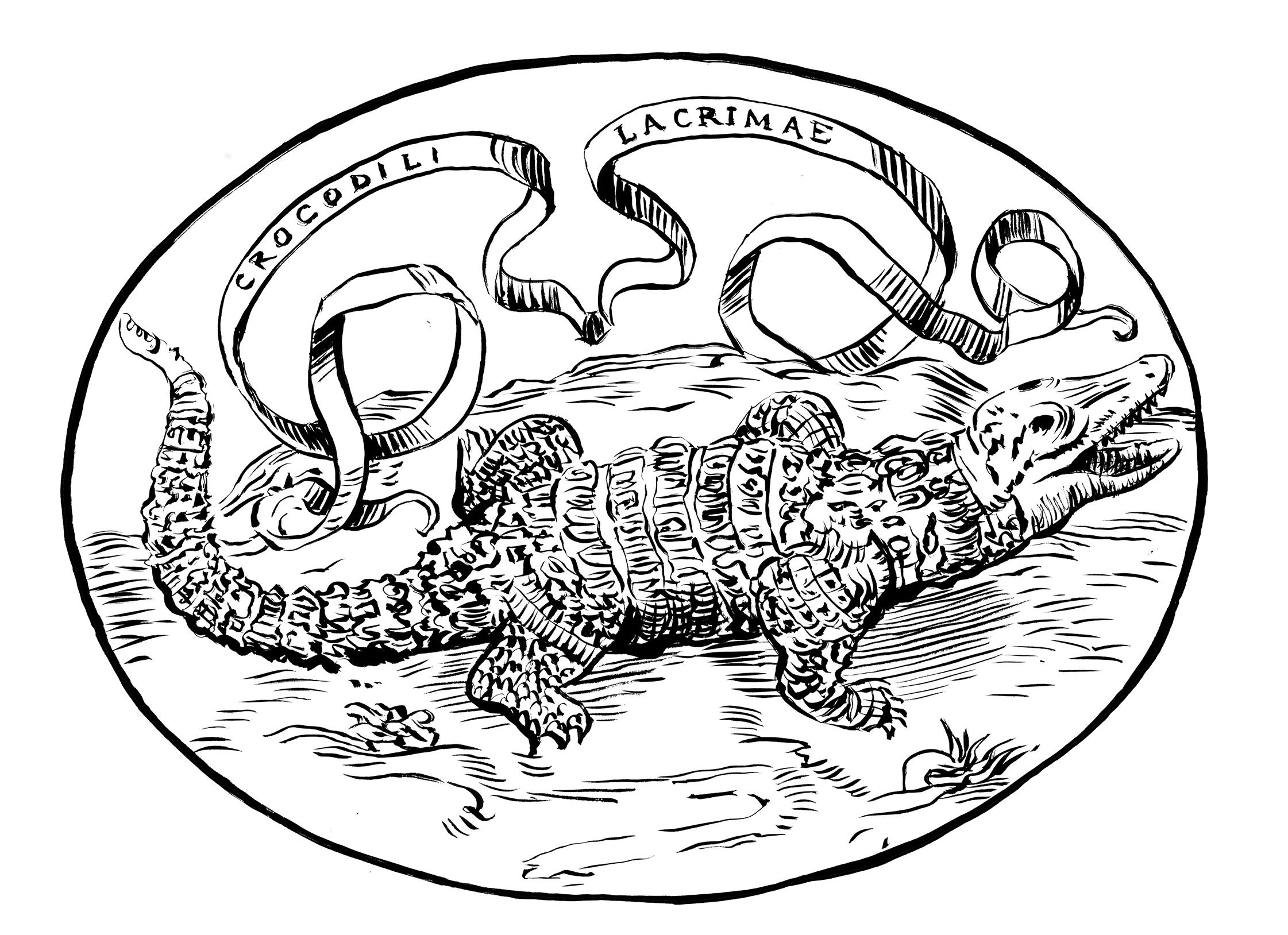 ovale coccodrillo fronte artbook