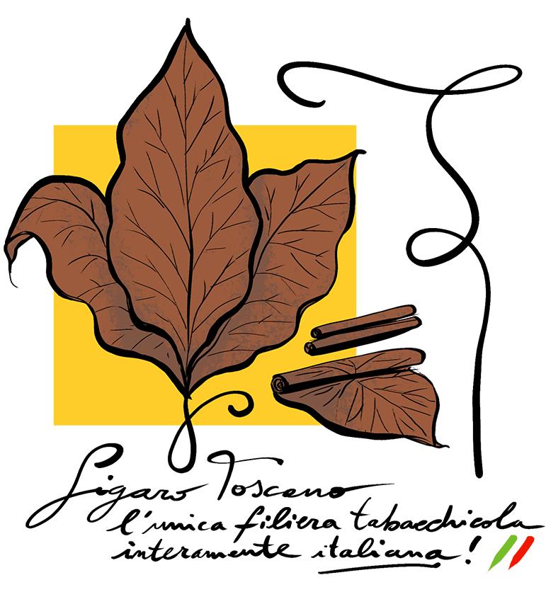 Sigaro toscano foglie di tabacco